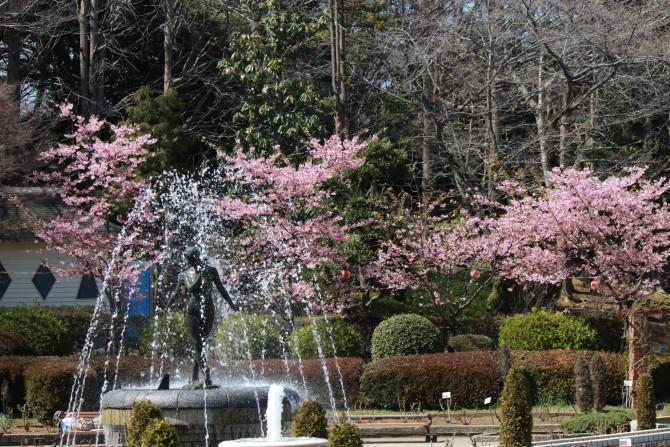里見公園さくら祭り 2012