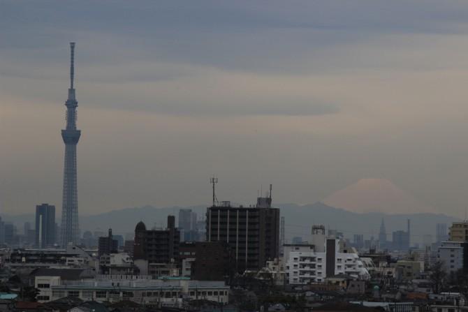 東京スカイツリーと富士山(里見公園より)