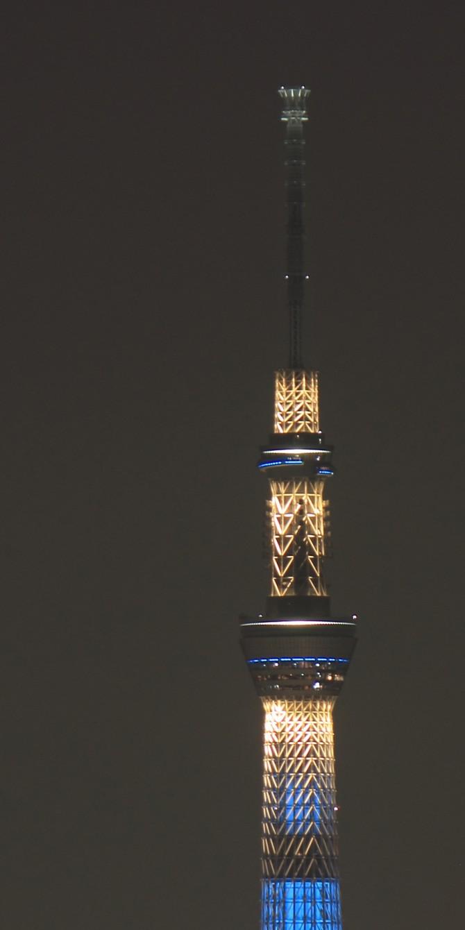 江戸川から撮影した東京スカイツリー