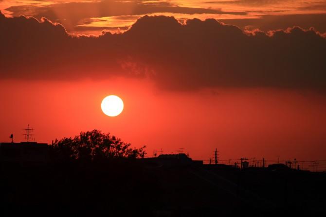 江戸川から見た夕陽