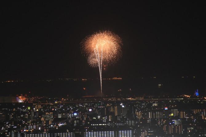 アイ・リンクタウン展望施設から撮影した東京ディズニーリゾートの花火