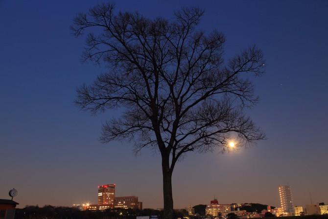 今日の月は満月