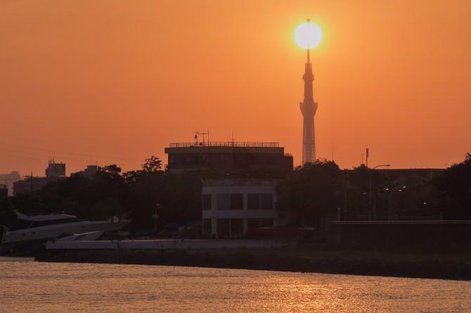 夕陽と東京スカイツリー 旧江戸川のほとりより