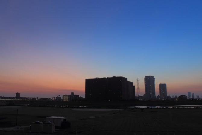 江戸川へお散歩はいかが?