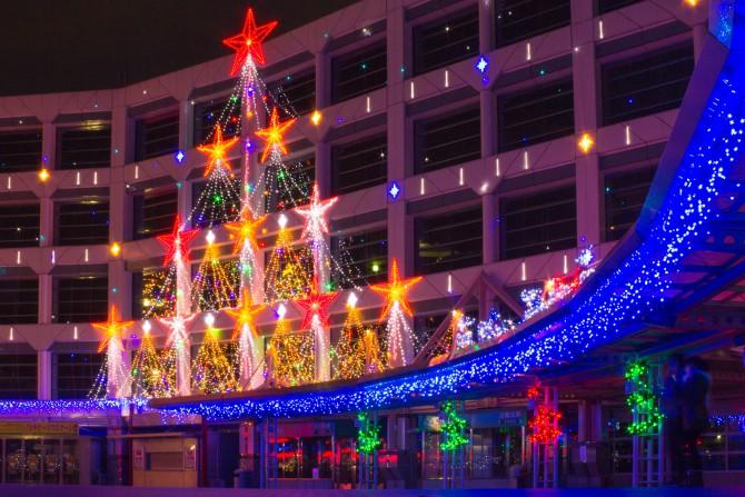 中山競馬場のクリスマスイルミネーション 2013年11月30日(土)からスタート
