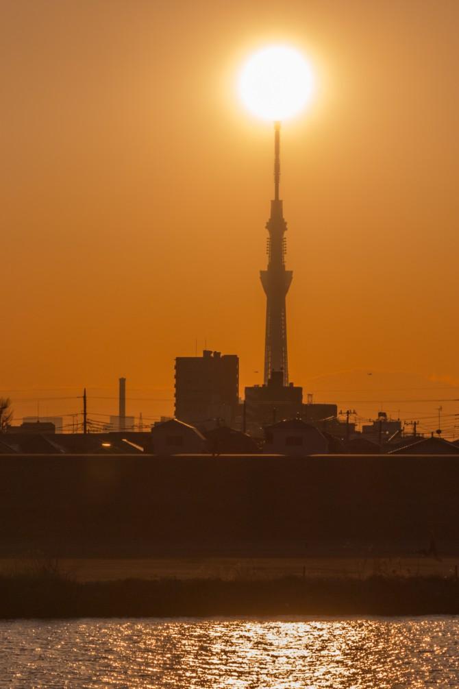 夕陽と東京スカイツリー 江戸川より