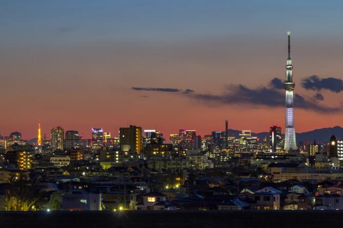 東京スカイツリーと東京タワー 里見公園より