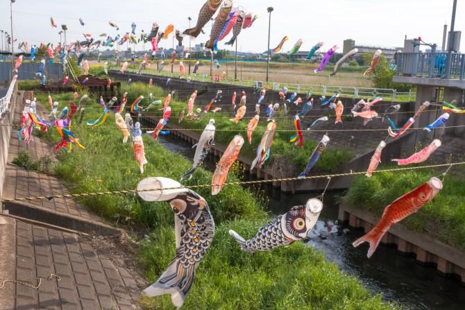 たくさんの鯉のぼり 国分川調整池付近にて 鯉のぼりフェスティバル2014
