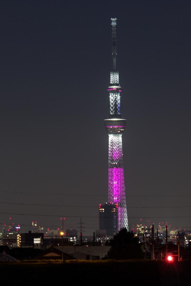 あす10月1日(水)は東京スカイツリーでピンク色の特別ライティング