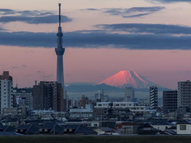 雪化粧を終えた富士山 江戸川より
