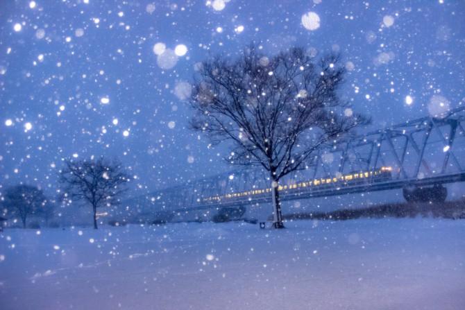 雪の江戸川