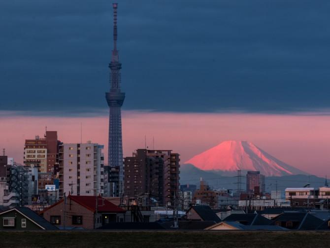 富士山と東京スカイツリー 江戸川の土手より