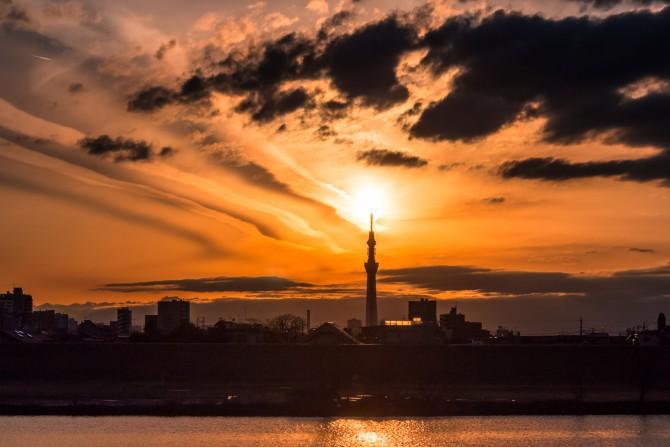 夕陽と東京スカイツリー 江戸川の土手より