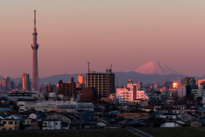 富士山と東京スカイツリー 里見公園内の高台より