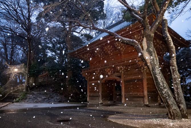 雪の真間山弘法寺