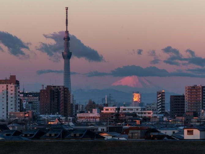 けさの富士山と東京スカイツリー 江戸川より