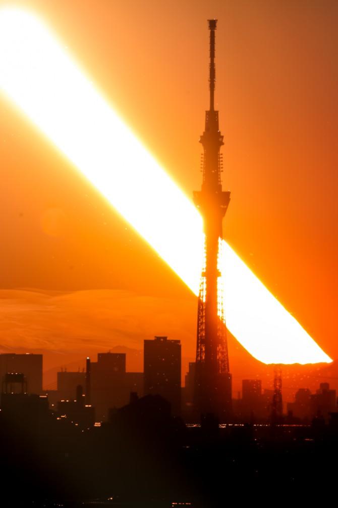 夕陽と東京スカイツリー 里見公園より