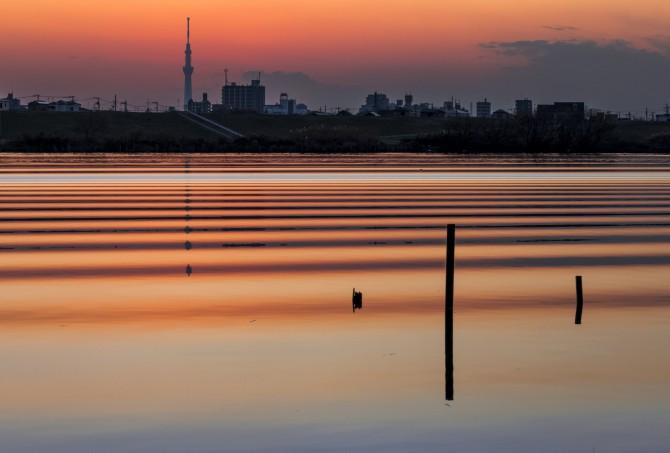 まちメモ市川駅版-『いちかわ』の写真展 『まち』と『そら』とか『ねこたち』とか 開催のご案内