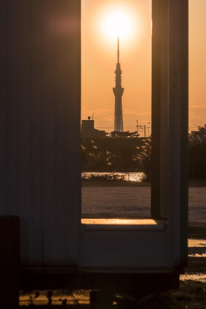 夕陽と東京スカイツリーと河川敷の公衆トイレ