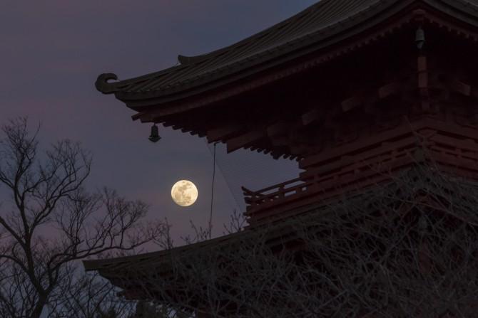 月と五重塔 中山法華経寺にて