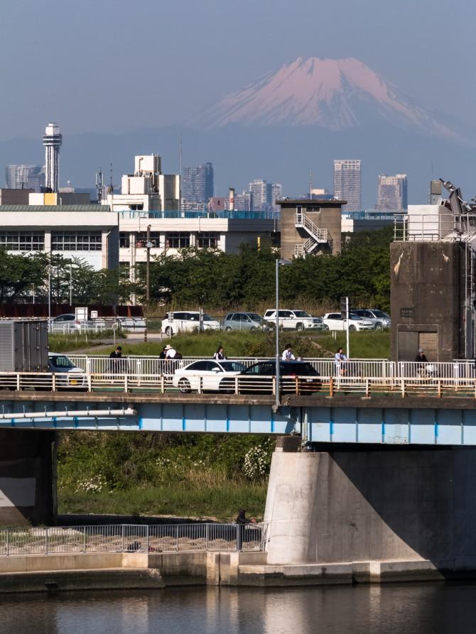 ひさしぶりの富士山 新行徳橋の上より