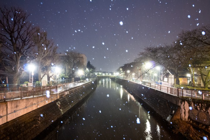 雪の真間川