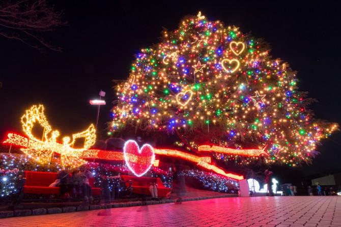 中山競馬場で今年もクリスマスイルミネーション