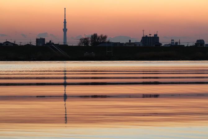 しましまの江戸川