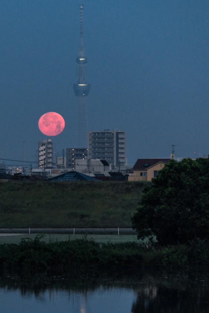 沈む満月と