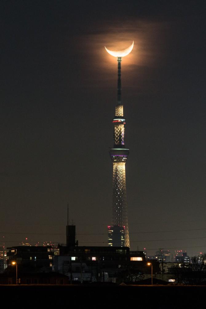 月と雅 江戸川土手より