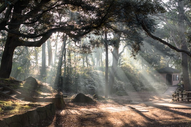 光芒(こうぼう) 里見公園にて