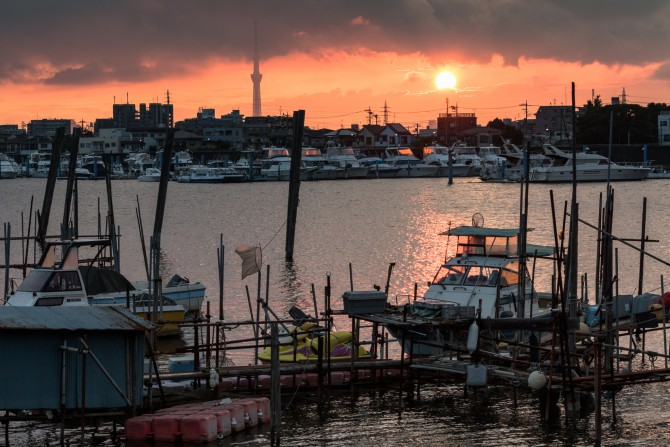 旧江戸川の夕暮れ