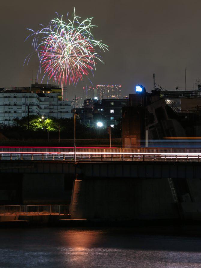 市川から見た江東花火大会