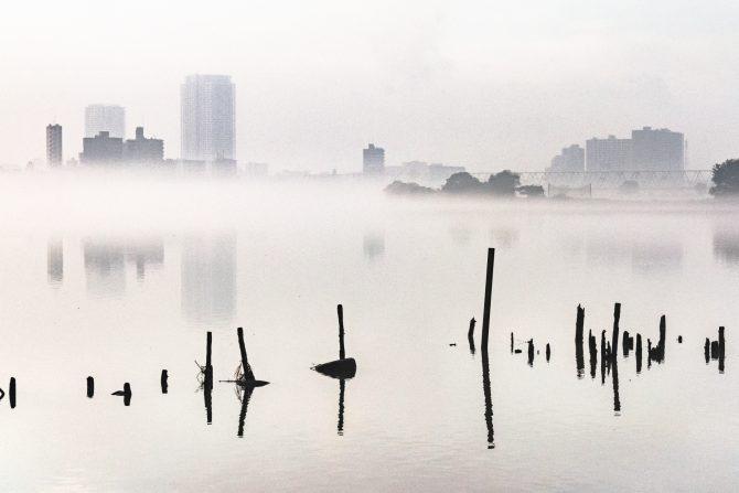 霧の朝  江戸川のほとりより