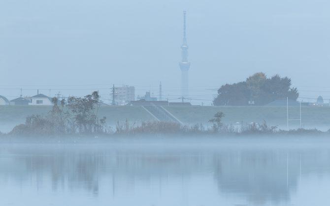 朝もやの江戸川とスカイツリー