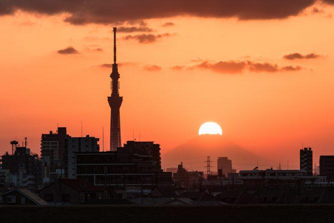 江戸川より 11月7日撮影