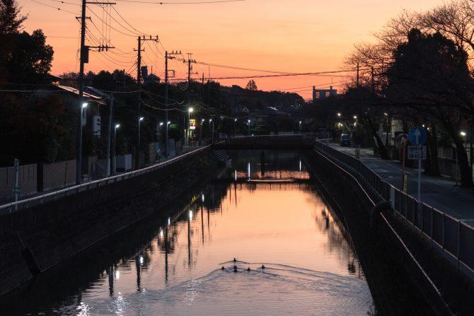 朝焼けの真間川
