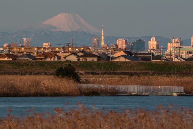 「富士山と東京タワー」 江戸川より