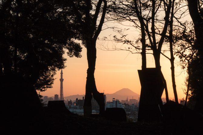 里見公園の夕暮れ
