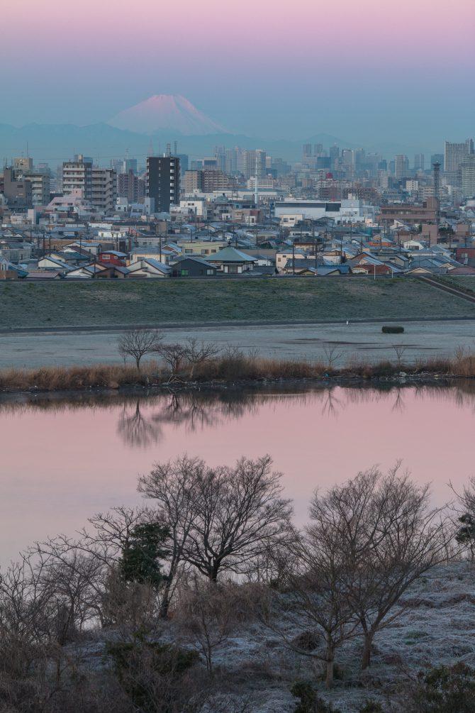 桃色に染まる江戸川と富士山