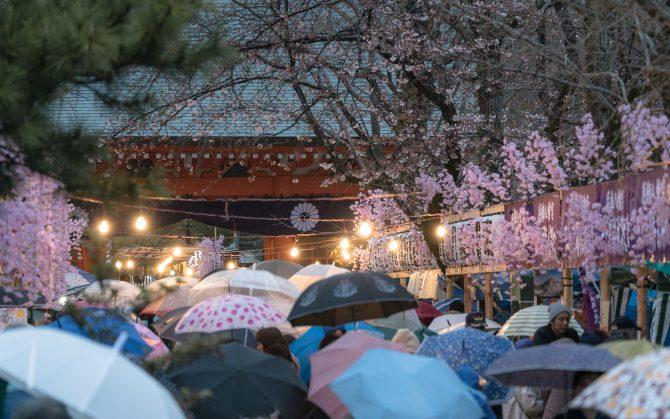 葛飾八幡宮で三十三周年式年大祭