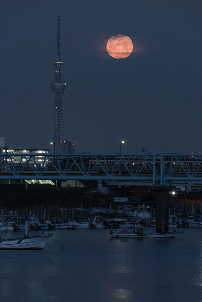 満月と 江戸川放水路にて