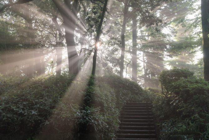 光芒(こうぼう)と階段