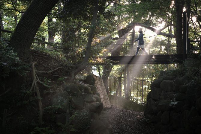 光の吊り橋