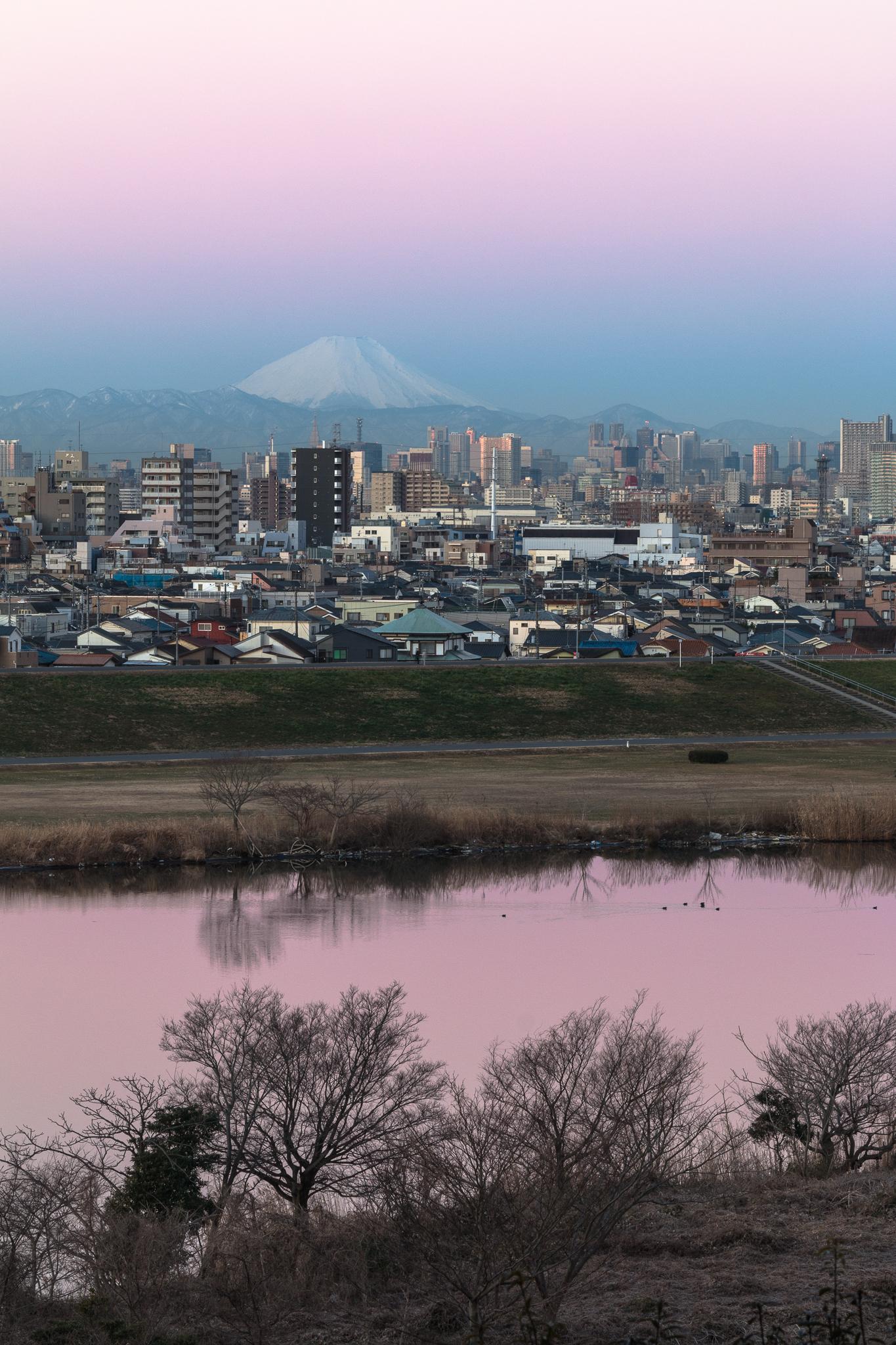 富士山と紅色に染まる江戸川 里見公園より