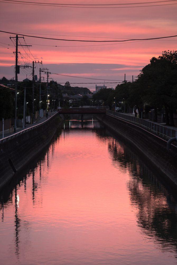 朝焼けに染まる真間川