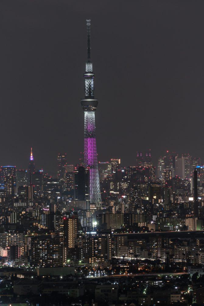 ピンク色特別ライティング中の東京スカイツリー