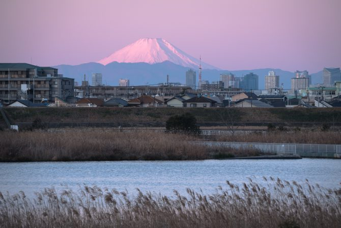 桃色の富士山と東京タワー