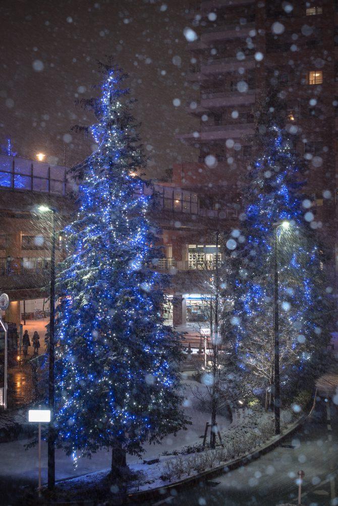 雪の市川駅南口