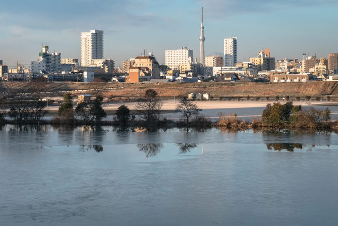 凍る江戸川